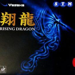 Rising Dragon da Yasaka na Patacho Ténis de Mesa